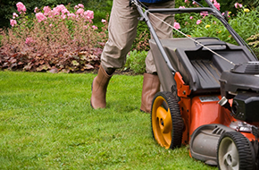 Lawn Maintenance | Hickman Tree Service | Mobile, AL | (251) 689-1301